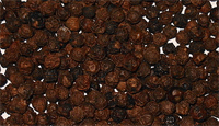 black-pepper-pd