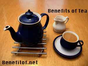 benefis of tea